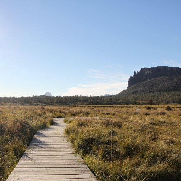 Boardwalks on Overland Track